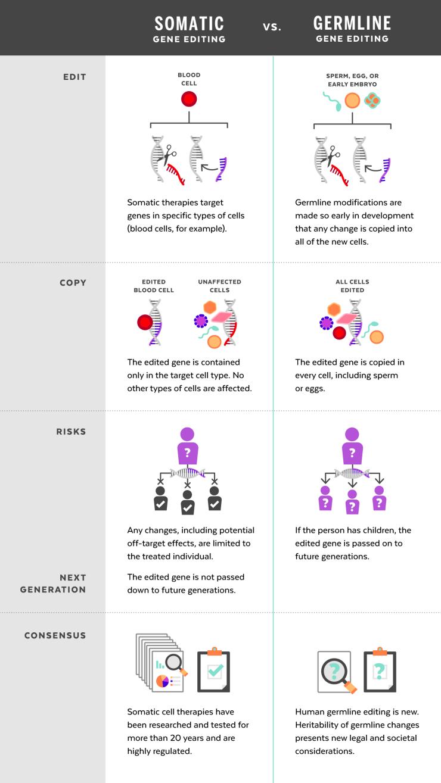 2019_08_01_Human_Genome_Editing_1406x2500